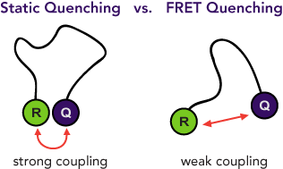 Static vs FRET quenching