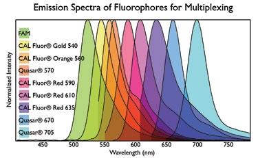 Fluorphore Emission Spectra
