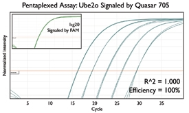 Quasar 705 Multiplex