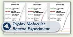 Triplex Molecular Beacon